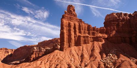 Laszlo Dobos/Shutterstock.com