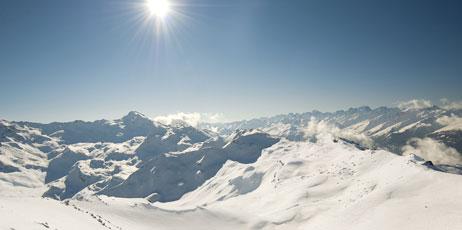 Paul Vinten/Shutterstock.com