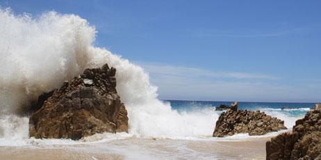 csp/Shutterstock.com
