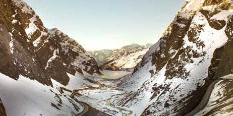 Tifonimages/Shutterstock.com