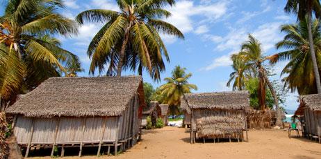 africa924/Shutterstock.com
