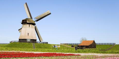 Worldpics/Shutterstock.com
