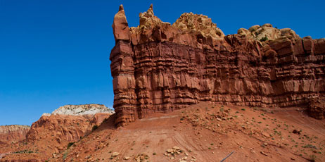 jo Crebbin/Shutterstock.com