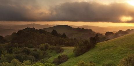 Matt Tilghman/Shutterstock.com