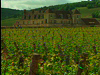 Burgundy Castle Stay