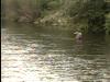 Catskills Flyfishing