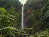 Guadeloupe Nature Preserve