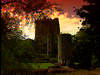 Ireland Blarney Castle