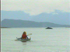 Kayaking the Alaska Inside Passage