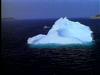 Newfoundland Iceberg Tour