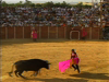 Seville Bullfighting